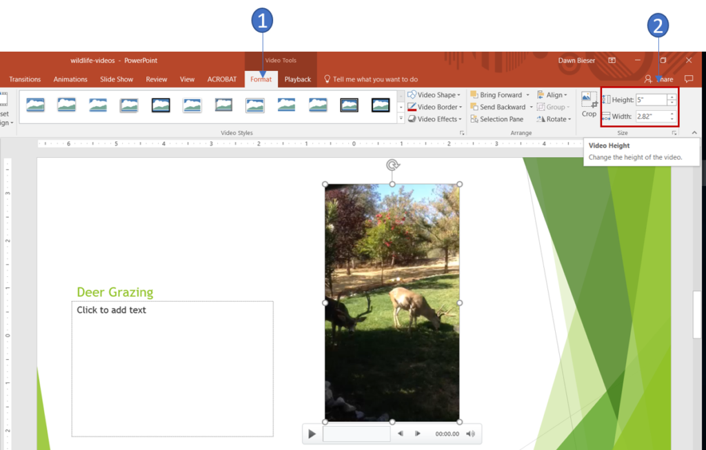 Resize a video in PowerPoint