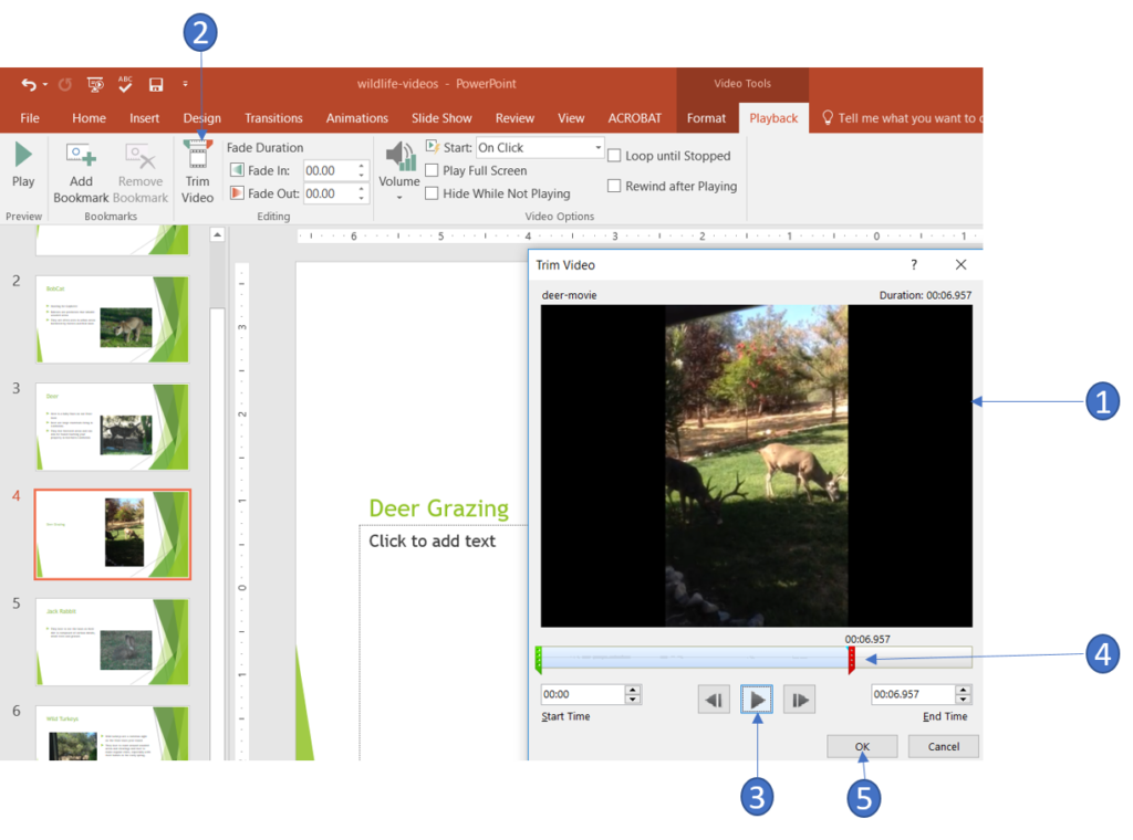 Trim a video in PowerPoint