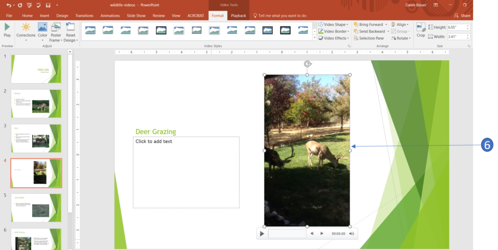 Video inserted in PowerPoint