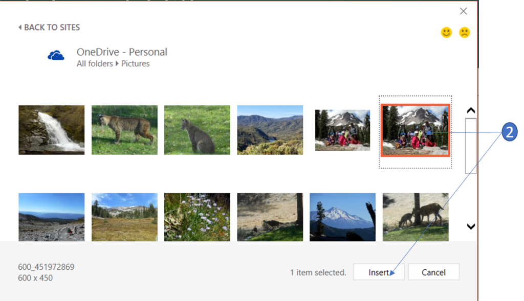 Insert a picture from OneDrive in PowerPoint 2016