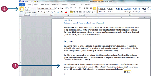 Paste text in Word