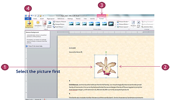 Remove a picture background in Word